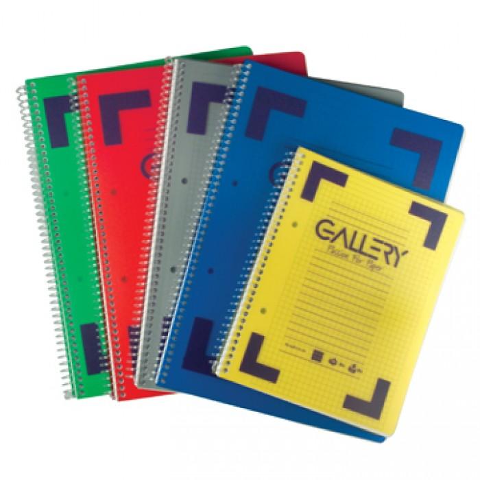 GALLERY Spiraalschrift A5 80vel 80gr Geruit Perfo