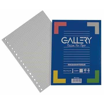 GALLERY Ringbandinterieur 17gats 50vel A5.Geruit