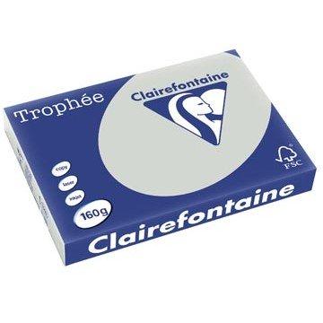 CLAIRFONTAINE Kopiepapier A3 Lichtgrijs 120gr 250v