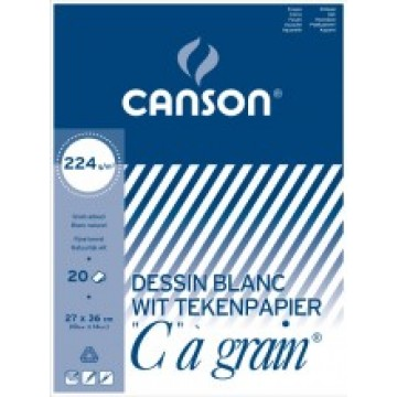 CANSON C à grain 20 vel Tekenpapier 27x36cm 224gr