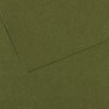 CANSON Mi-Teintes  50X65 160gr  groen Ocean  448
