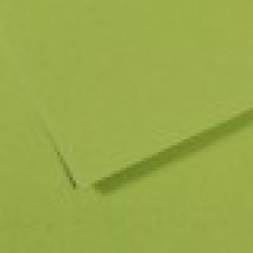 CANSON Mi-Teintes  50x65 160gr  Appelgroen  475