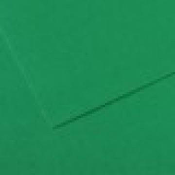 CANSON Mi-Teintes  50X65 160gr  Biljartgroen  575