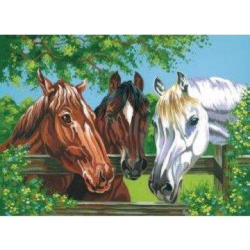 """REEVES Schilderen op nummer """"Paarden"""" 30x40cm"""