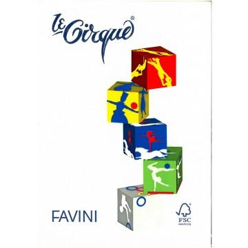 FAVINI Kopiepapier 160gr 250vel A4 Ivoor