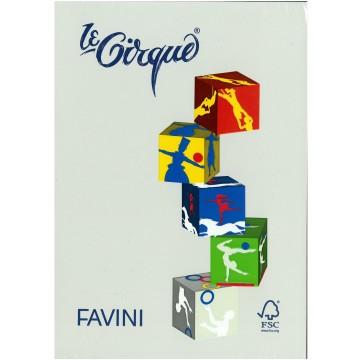 FAVINI Kopiepapier 160gr 250vel A4 Grijs