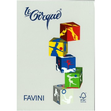 FAVINI Kopiepapier 80gr 500vel A4 Grijs