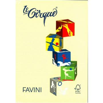 FAVINI Kopiepapier 160gr 250vel A4 Geel