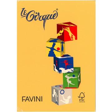 FAVINI Kopiepapier 160gr 250vel A4 Goudgeel