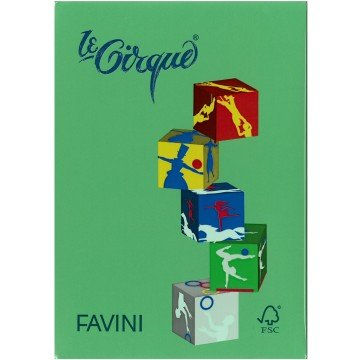 FAVINI Kopiepapier 160gr 250vel A4 Grasgroen